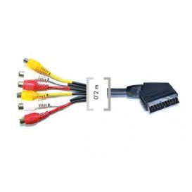 Cable EURO a 6 RCA Hembra