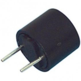 Fusible Lento Miniatura RFT-0,315Amp   R5,08mm
