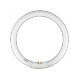 Tubo Fluorescente Circular T9 40W Dia