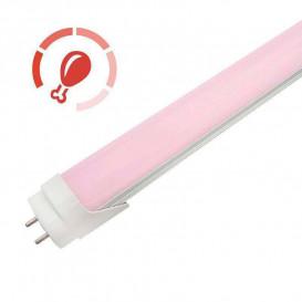Tubo LED Carnico PINK T8 10W 6cm ProFresh