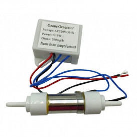Generador de ozono de 200 mg/hora con transformador