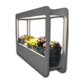 Kit de crecimiento de plantas para uso interior