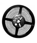 Tira LED AMARILLO 12V 4,8W/m 60LED/m IP65 5m