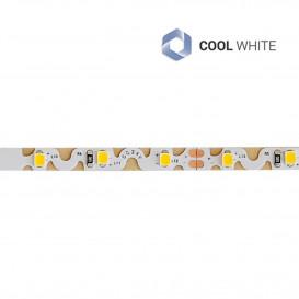 Tira LED 12V 6W/m SMD2835 60LED/m 3000K IP20 CURVO 5m