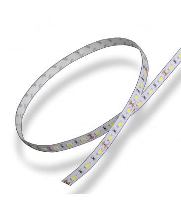 Tira LED 5mts 5630 12V 80W 300L IP20 6000K