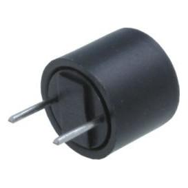 Fusible Lento Miniatura RFT-0,100Amp   R5,08mm